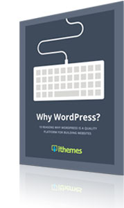 Why WordPress free ebook from ithemes